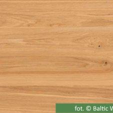 baltic-sense